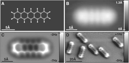 Afbeelding uit het beschreven artikel. Linksboven een computeranimatie van hoe wij theoretisch organische moleculen zien. Rechtsboven hoe je pentaceen zou zien met electronenmicroscopie. Over zien we zupergave afbeeldingen van pentaceen met de AFM.