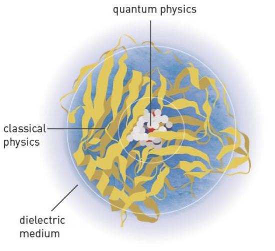 Een combinatie van kwantumchemie en klassieke mechanica: het grote eiwit (geel) wordt klassiek benaderd, terwijl het interessante gedeelte kwantummechanisch uit wordt gerekend.
